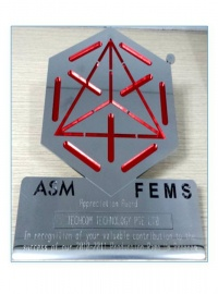 ASM FEMS Appreciation award